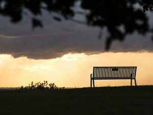 Our Memorial Bench Program | PW Athletic Mfg. Co.